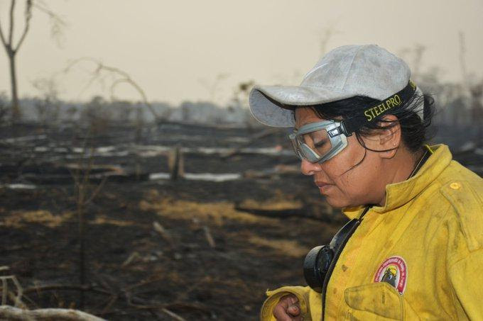 A woman in manual labor clothes stands in the foreground. In the background, burn soil and tree stems suggest devastation and catastrophe.