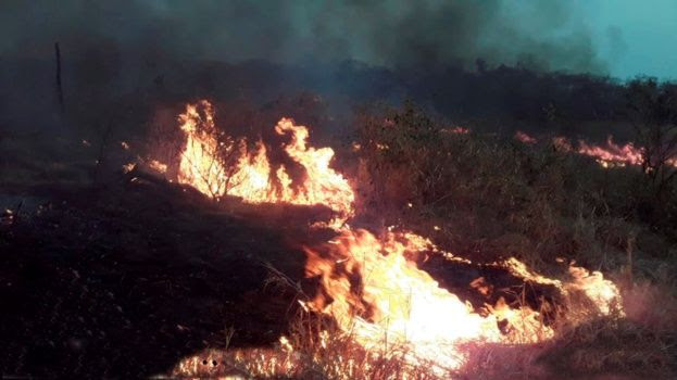 Fires raging through vegetation in El Deber, Bolivia (2019)